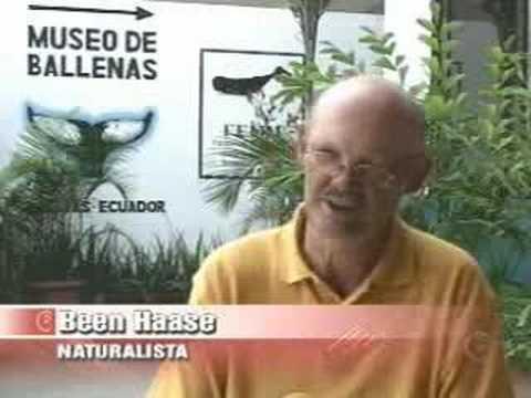 Museo de Ballenas en Salinas