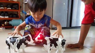Đồ Chơi Con Bò Dùng Pin ❤ Cow Toys Racing Game ❤ Tin Siêu Còi ❤