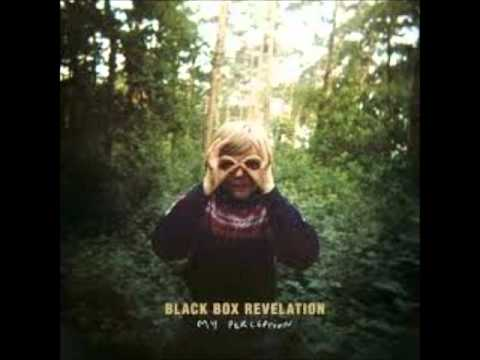 The Black Box Revelation - Rattle My Heart