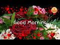 Whatsapp Status Video 2018    Good Morning Video Songs Download