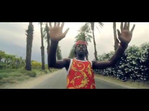 Flatbush Zombies - Palm Trees (Lyrics)