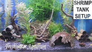 Shrimp Tank Setup - TimeLapse - Yellow Neon