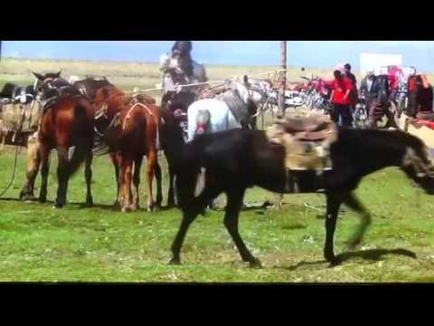 The Great China Discovery - A Mongolia Marriage Celebration