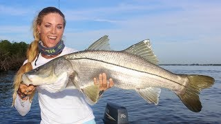 Catching MONSTER Snook, the fish that changes it's sex!