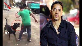 رد فعل نسر الكونغ فو حول أشهر قضية هجوم كلب في مصر علي شاب غلبان - وتعليمات للدفاع عن النفس