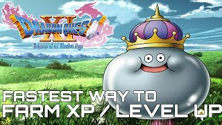 Dragon Quest XI FASTEST WAY TO FARM XP / LEVEL UP