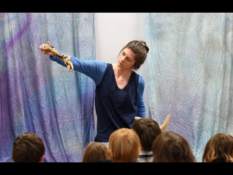 Mary's Monsters - the true tale of fossil hunter Mary Anning