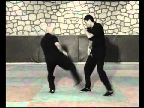 Jeet kune do techniques de base Image 1