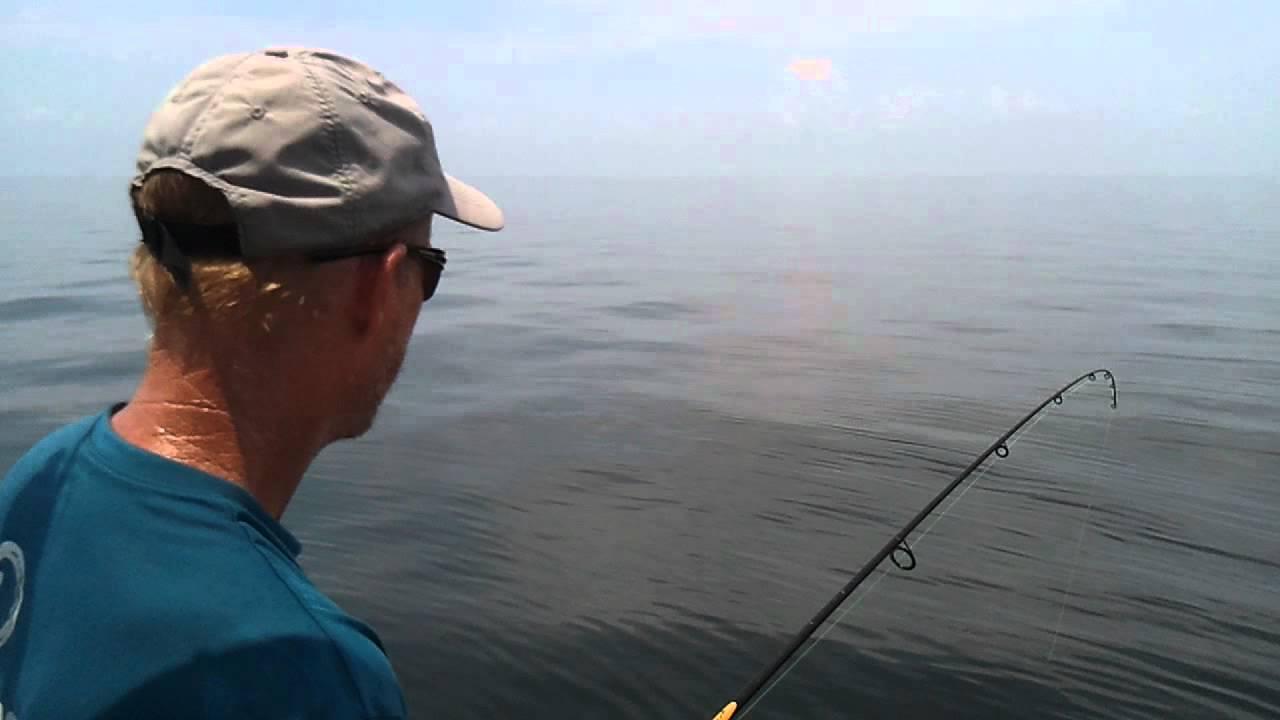 Shark fishing biloxi ms youtube for Fishing in biloxi ms