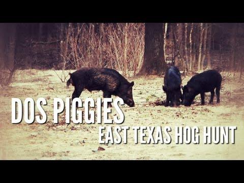 Hog Hunt with Silencer   Dos Piggies