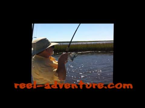 Cape Fear Red Drum Fishing with Reel Adventure Charters