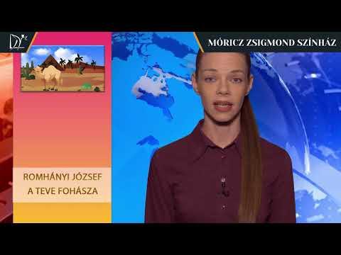 Színházi mesematiné - Jenei Judit - Romhányi József: A teve fohásza