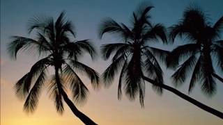 Relax Music Sunset The Sun Video Song HD