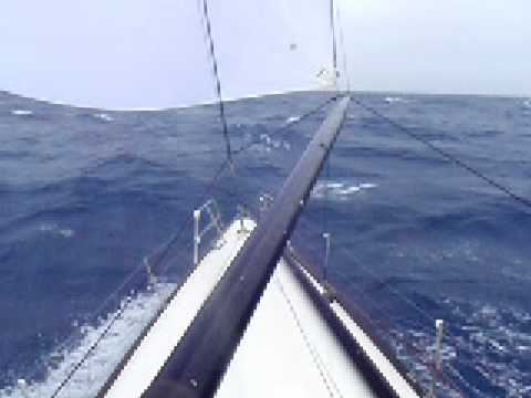 Ragtime Sydney Hobart Staying Alive In The Waves YouTube