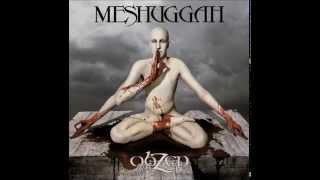 Watch Meshuggah Pineal Gland Optics video