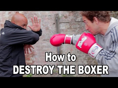 wing chun techniques - how to destroy the boxer Q36 Image 1