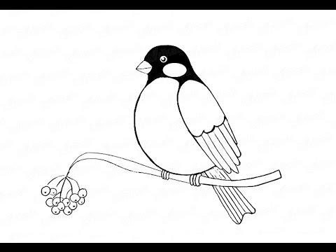 Видео как нарисовать птицу на ветке
