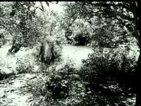 Aajare pardesi-Lata ji-Madhumati(1958)