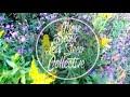 More Beats Less Sleep Collective - Komorebi Side A (LoFi HipHop)