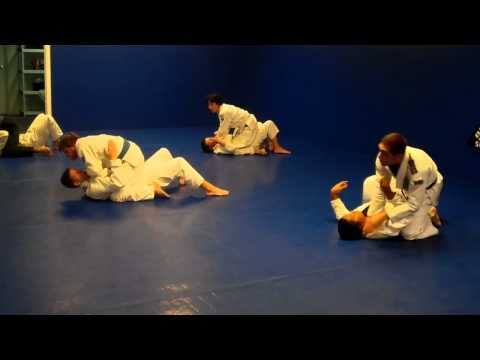Fundamental BJJ Flow Drill Image 1