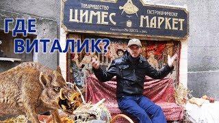 А где Виталик? Приколы на охоте №116 - Анекдоты про охотников от Новицкого