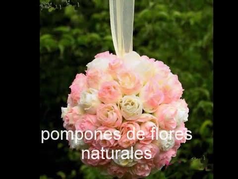 Pompones de flores naturales en Buenos Aires