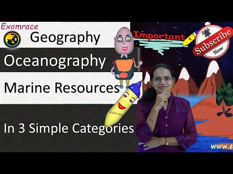 Marine Resources - In 3 Simple Categories