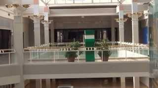Watch Warren Zevon Down In The Mall video