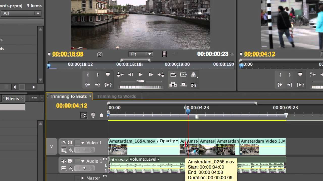 Adobe premiere pro cs5 5 fishing