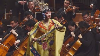 Spring Festival Guangzhou Symphony Orchestra Performs In Brussels