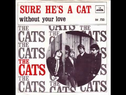 The Cats - Sure He's A Cat