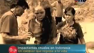 Cadaver que regresa a la vida en Indonesia - Video Paranormal