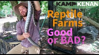 Reptile Farming   Are You For It or Against It?