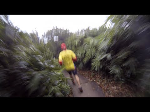 Extreme workout - the art of trail running in Hong Kong