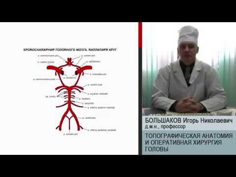 Скачать учебник хирургические болезни