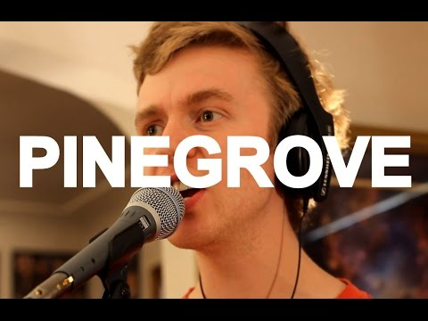Pinegrove - Problems