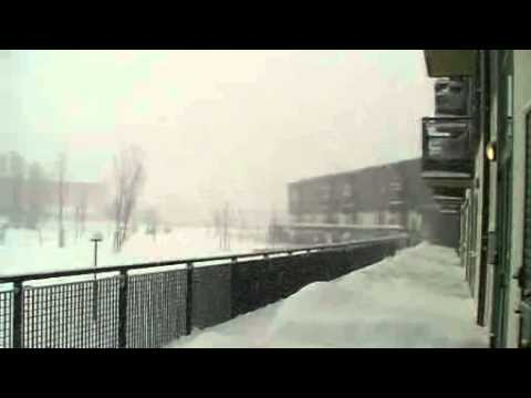 Nevicata 2012.mp4