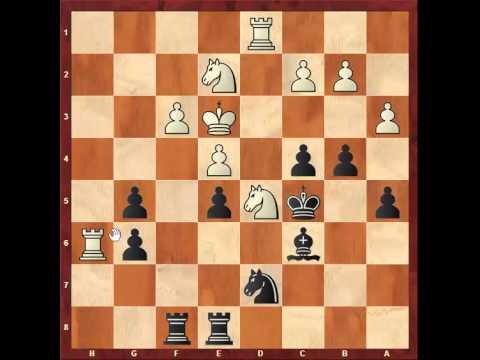 Chess: Closed Sicilian game Ildar Ibragimov 2637 - Susan Polgar 2577 http://sunday.b1u.org