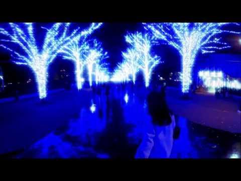 Yahoo!Japan 360度イルミネーション動画(青の洞窟 SHIBUYA)