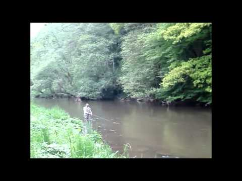 Fly fishing on the Kyll Germany