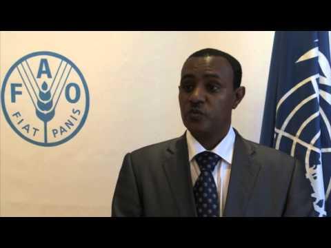 H.E. Tefera Derbew (Ethiopia)