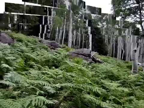 Kachina Trail - Flagstaff AZ 2012, Part 1 of 2