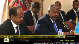 DireTube News - Djibouti, Ethiopia accuse Eritrea of undermining stability