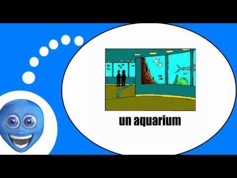 Французского видео урок = Мест и их имена