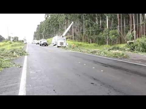 Crews in Paauilo (Part 1 of 3)