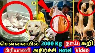 சென்னை HOTEL-க்கு வந்த 2000 kg நாய் கறி ! அதிர்ச்சியில் பொதுமக்கள் ! 1000kg Dog Meat at Chennai