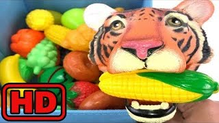 Kid -Kids -Learn ZOO Animals/ Tiger Eating Fruits And Vegetables/Funny Learning Video For Children/