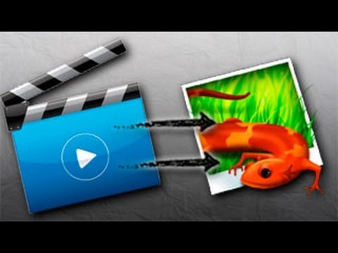 Extraer imágenes de un vídeo [Fácil y Rápido]
