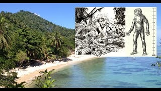 Does a Giant Race Still Exist in the Solomon Islands?