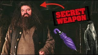 Harry Potter Theory: Was Hagrid Dumbledore